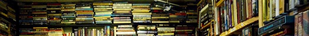 Literatura Copilăriei și Adolescenței